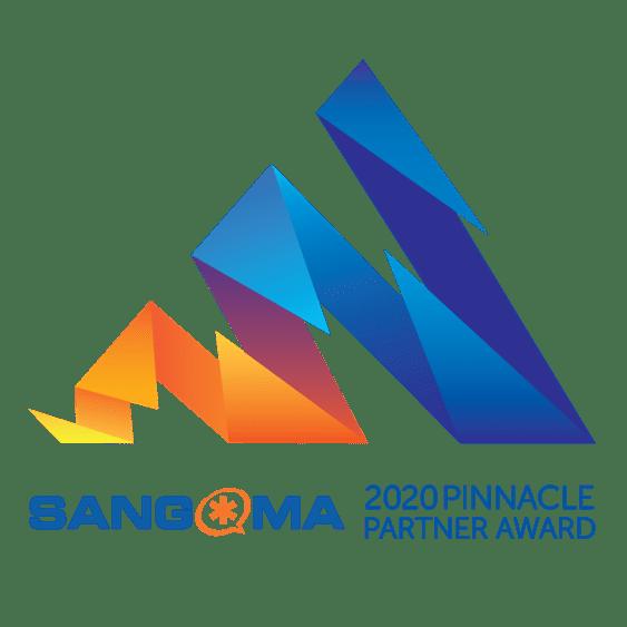 2020 Pinnacle Partner Award.